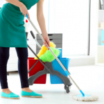 Experienced House Cleaner Needed Nantucket